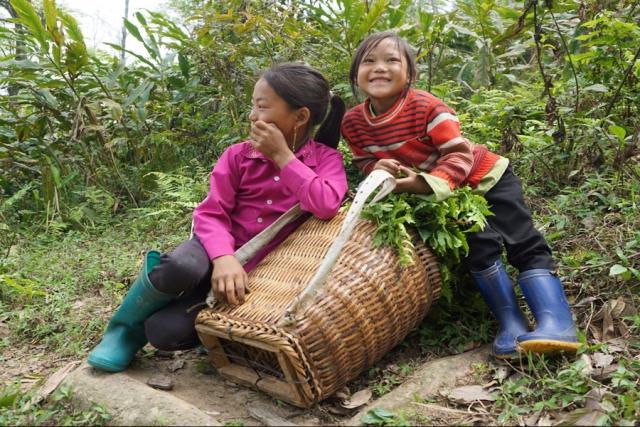 Vietnam von Nord nach Süd intensiv erleben