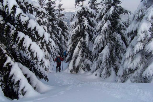Polen und Tschechien - Winterwanderung mit Schneeschuhen