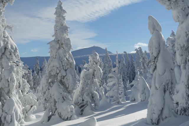Schneeschuhwandern im Riesengebirge