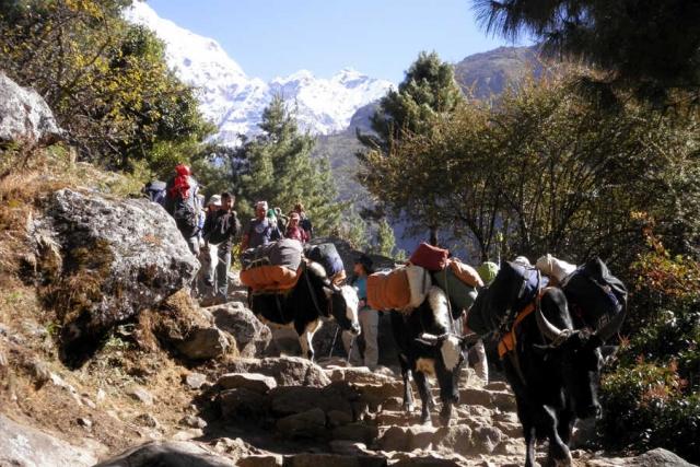 Nepal - Unterwegs im Herzen des Himalaya