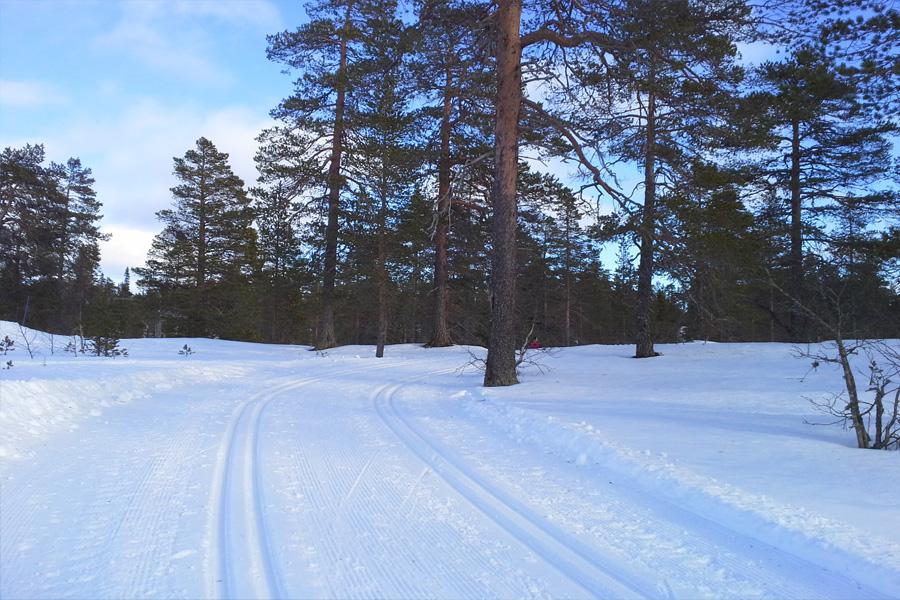 Skimarathon in Finnland der Finlandia Hiihto
