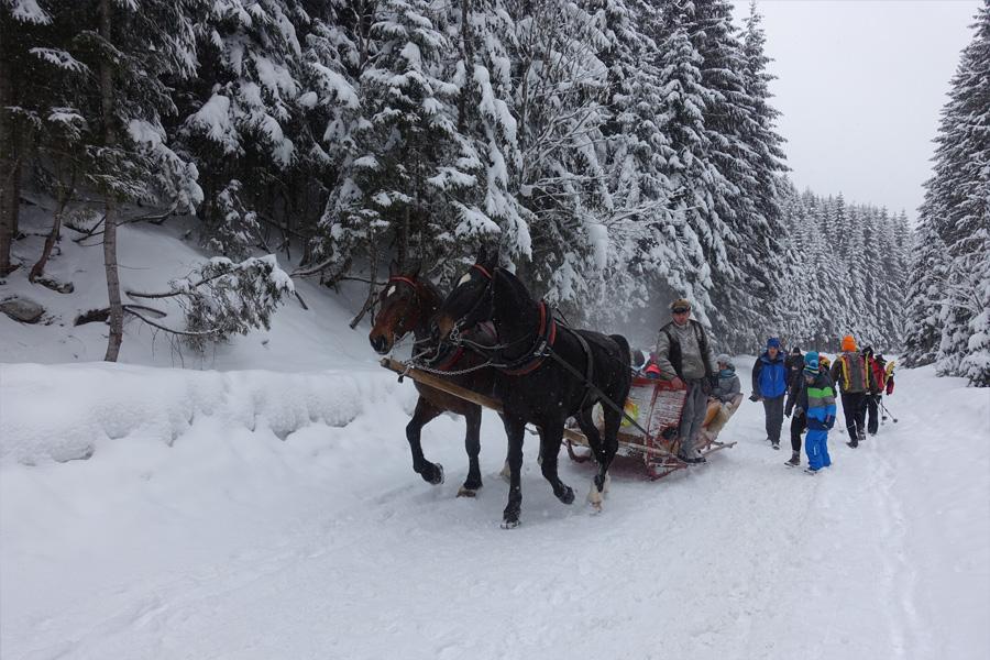Schneeschuhwandern in der Hohen Tatra