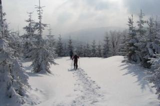 Polen und Tschechien - Schneeschuhwandern im Isergebirge
