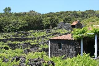 Portugal - Inselhopping im Atlantik