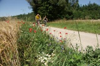 Polen - individuelle Radreise Masurische Seenplatte, Oberländer Kanal und Danzig