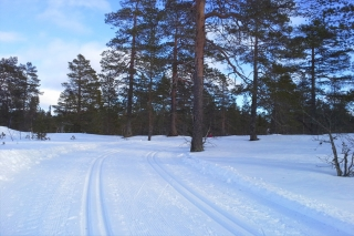 Finnland - Finlandia Hiihto Ski-Marathon