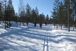 Skisportreise nach Estland und Finnland