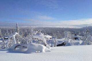 Skilanglauf auf dem Golsfjell